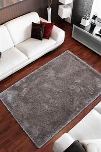 Teppich Silber Glänzend : 200x290 teppich ecuador macas silber ~ Lateststills.com Haus und Dekorationen
