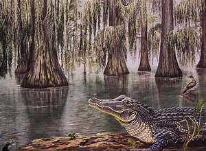 Louisiana Alligator - Delilah Young Art Studio