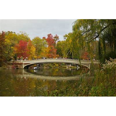 Bow Bridge Central Park Ny Photograph by Jose Oquendo