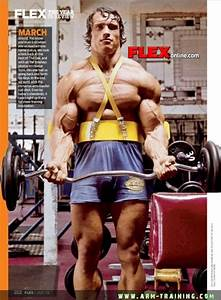 17 Best Images About Big Arms Of Bodybuilding Legends On