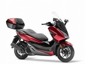 Honda Forza 125 2018 : nouveau honda forza 125 2018 2019 look et quipements ~ Melissatoandfro.com Idées de Décoration