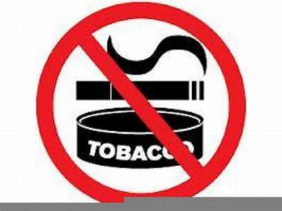 Clipart Tobacco Chewing Clker Clip