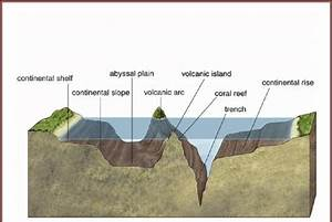 Schematic Diagram Shows Continental Shelf  Slope  Trench