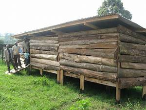 How to build a cheap goat shed quick easy for Cheap goat shelter