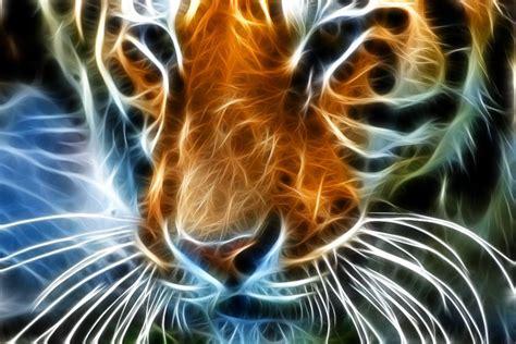 Kinda Freaky Neon Tiger Jamil Ghanayem