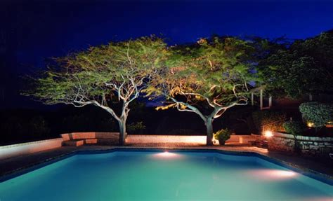 tree shaded pool  night interior design ideas