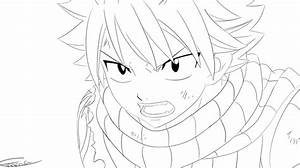 Natsu Dragneel Fairy Tail Lineart by Kurinka206693 on ...