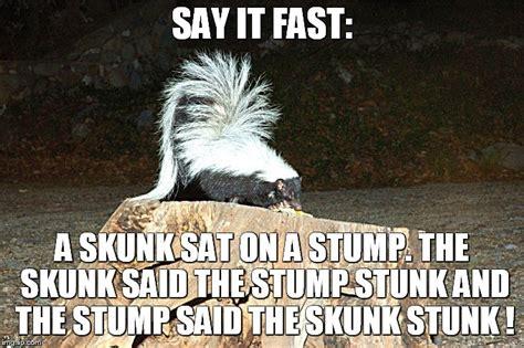 Skunk Meme - skunk meme 28 images scumbag skunk memes quickmeme not sure if skunky weed smell or an