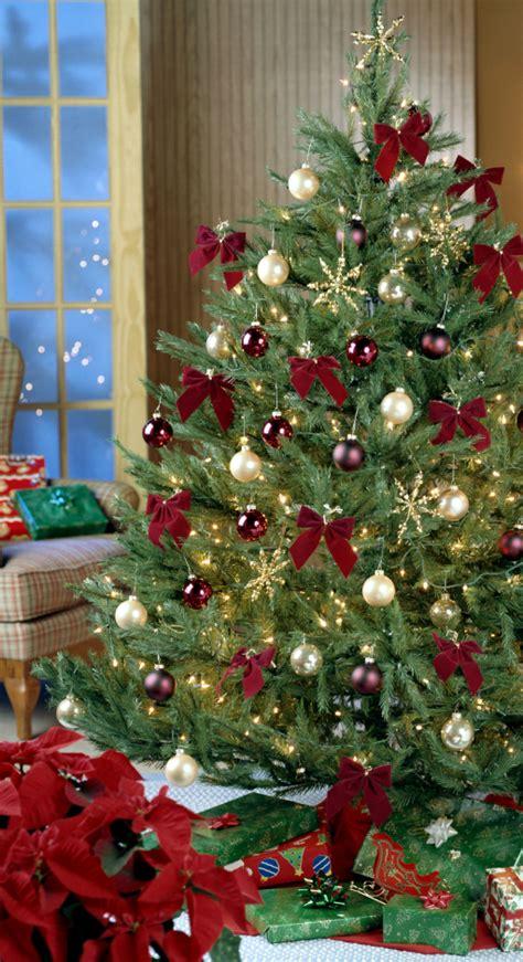 maroon christmas decorations altogetherchristmas trees