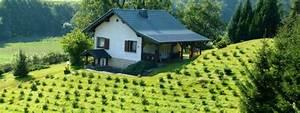 Ferienhaus Im Thüringer Wald : ferienhaus trusetal urlaub im th ringer wald umgebung ~ Lizthompson.info Haus und Dekorationen