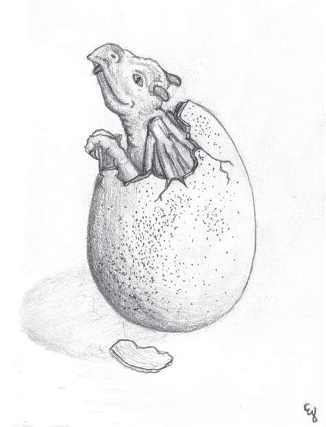 drawn dragon dragon egg pencil   color drawn dragon
