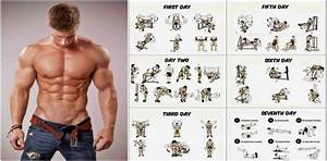 Weight Training Programs To Build Muscle And Gain Weight
