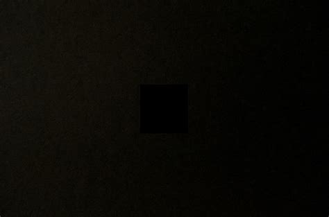 darkest color in the world meet the who wants to grow the blackest color in the