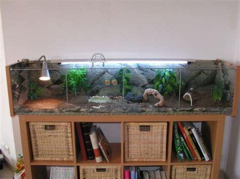 aquarium pour tortue terrestre les 25 meilleures id 233 es de la cat 233 gorie terrarium pour tortue sur enclos pour tortue