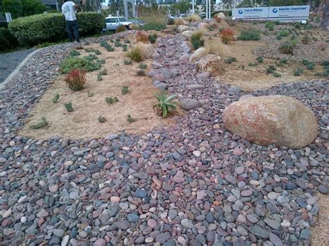 succulents river rock garden ideas