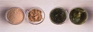 Laver Chien Savon Noir : rhassoul biologique et naturel maroc argan ~ Melissatoandfro.com Idées de Décoration