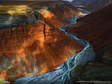 Winners Of The 2017 Nat Geo Nature Photographer Of The ...
