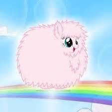 pink fluffy unicorn dancing  rainbowdash