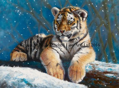 Tiger In The Snow Christmas Card By Pip Mcgarry