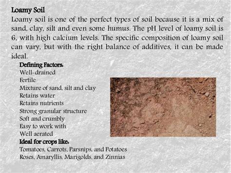 loam definition soil
