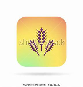 Cereals Icon Stock Vector 382932721 - Shutterstock