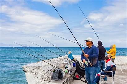 Shutterstock Angler Shark Fishing Centre Responsible Recreational