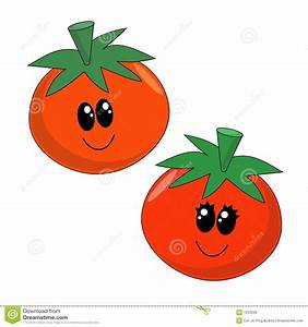 Cartoon Tomatoes stock vector. Image of fibre, vegetable ...