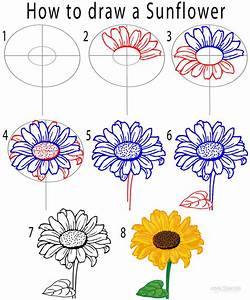 How to Draw a Sunflower (Step by Step Pictures) | Cool2bKids