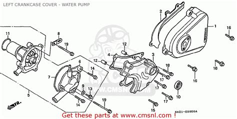 honda cbr250rr mc22 1990 l japan left crankcase cover water schematic partsfiche