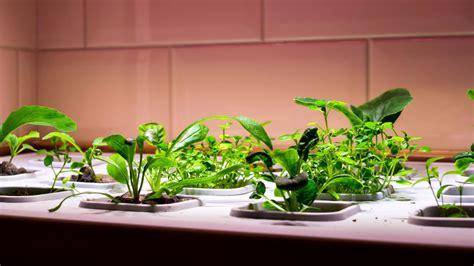Time Lapse Of Ikea Vxer Indoor Garden Youtube