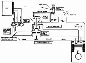 1998 Expedition Engine Diagram : solved on a 1998 expedition where is the pcm and the fixya ~ A.2002-acura-tl-radio.info Haus und Dekorationen