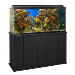 75 gallon aquarium petco 75 gallon upright aquarium