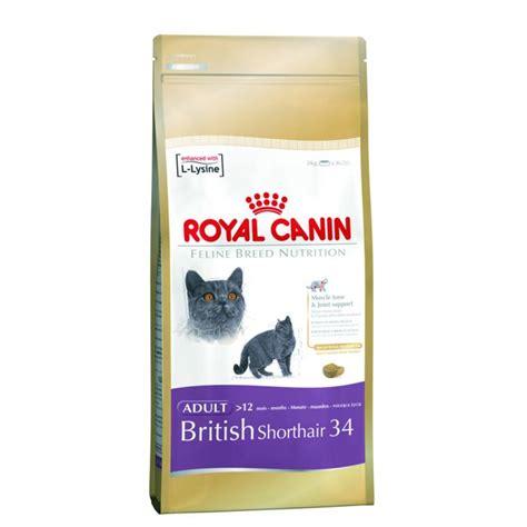 royal canin kitten shorthair royal canin shorthair 34 cat food 2kg feedem