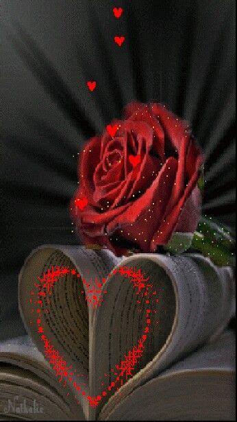 salaam red roses love wallpaper beautiful gif