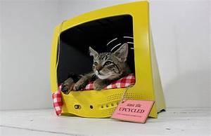 Panier Pour Chat Original : panier pour chat original ~ Teatrodelosmanantiales.com Idées de Décoration