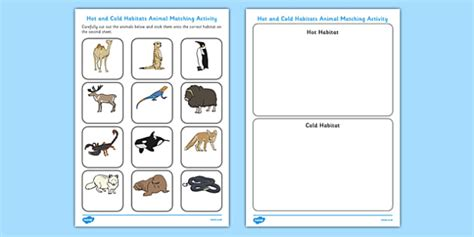and cold habitats animal sorting worksheet cold