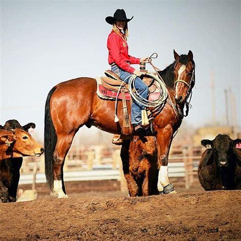saddle pads usa pad ever rodeo besteverpads