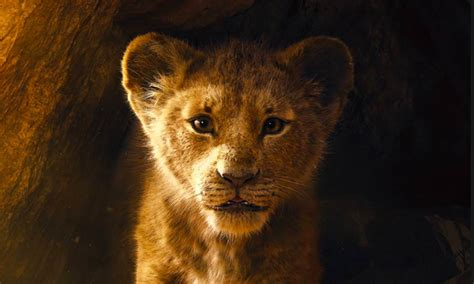 lion king roars  record setting trailer animation