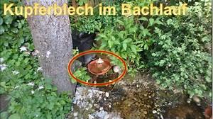 Algen Im Gartenteich : kupferblech im gartenteich gegen algen rue25 notizen ~ Michelbontemps.com Haus und Dekorationen