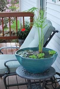 Bulleur Pour Bassin : mini bassin original pour plantes aquatiques ~ Premium-room.com Idées de Décoration