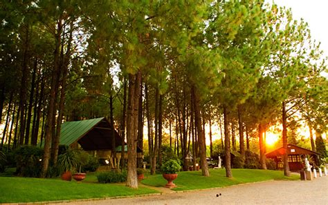 Garden Wedding Venues In Johannesburg gauteng wedding venues the forest walk venue