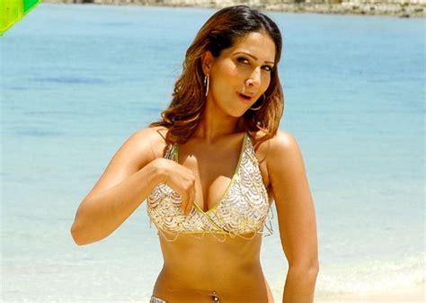 Sexy Babe Kim Sharma Celebsee
