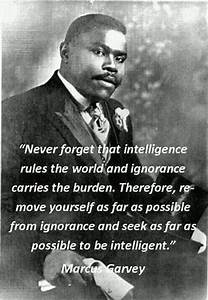 Seek intelligence; Learning is Infinite. Find and connect ...