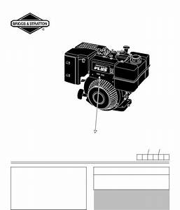 Briggs  U0026 Stratton 250000  190000 User Manual