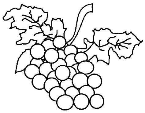 Grape Clipart Coloring Page