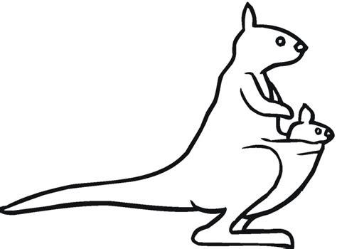 kangaroo outline    clipartmag