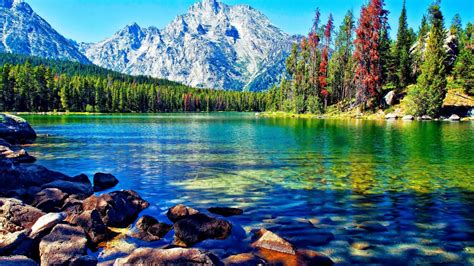 Beautiful Lake Mountain Forest Desktop Wallpapers