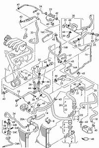 2001 Jetta Parts Diagram  2001  Free Engine Image For User