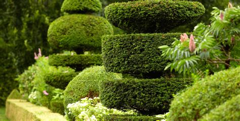 Herbst Garten Zeit by Fr 252 Hjahr Gartenzeit