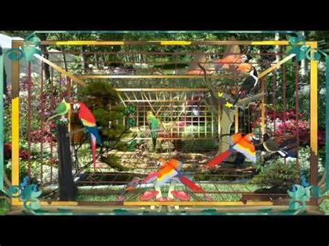 le carnaval des animaux l aquarium 27 best images about klassieke muziek beluisteren on